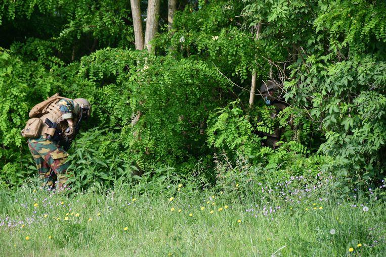 Het waren militairen die woensdag de dichtbegroeide bossen in Dilsen-Stokkem uitkamden. Beeld BELGA