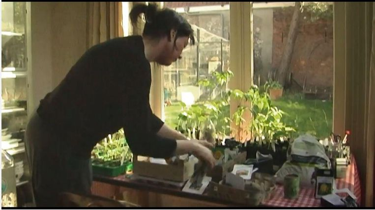Een inwoonster van Leiden teelt haar eigen kruiden thuis. Beeld
