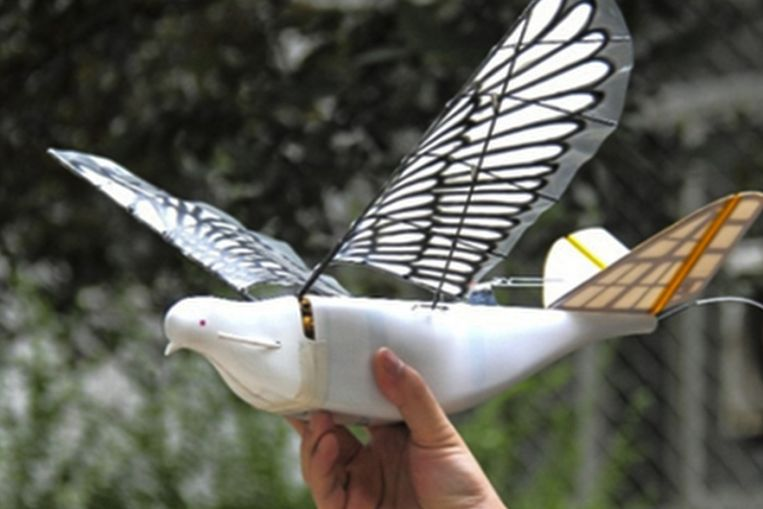 De duifdrone Dove van Northwestern Polytechnical University. Beeld RV