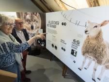 Educatief centrum is weer open voor publiek: 'We willen weer vertellen over de schapen en het Haaksbergerveen'