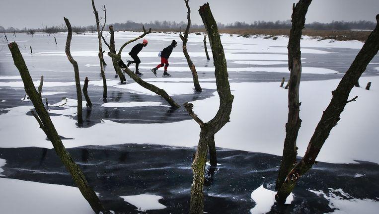 Schaatsers trotseren de gure wind op het ijs van de ondergelopen Jan Durkspolder bij Eernewoude, eerder deze week. Beeld ANP