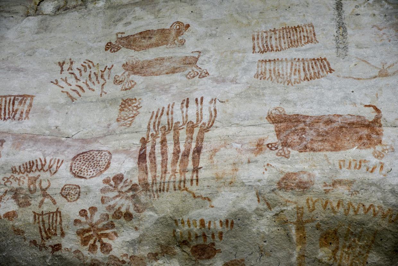 Een eerder ontdekte rotswand in Serrania La Lindosa met vergelijkbare kunst.  Beeld AFP