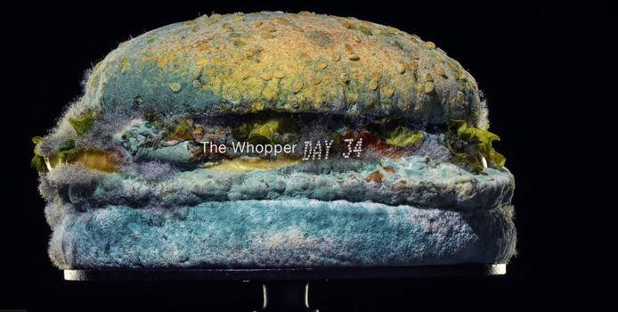 De schimmelburger uit de video