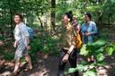 Wandelcoach Hester Sybrandi (links) maakt met Inge, Merel en Mariejella de wandeling van de JobOn Loopbaan Vierdaagse in Oisterwijk.
