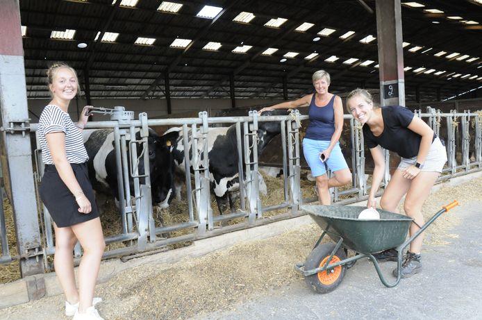 De drie dames combineren het vleesveebedrijf met de speelboerderij.