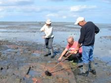 Zeeuwse Archeologen Dag online: iedereen kan meekijken
