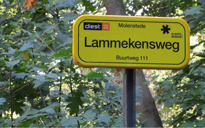 Straatnaamborden om de wegen makkelijker terug te vinden.