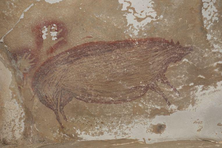 De grottekening van het zwijn, zeker 45.500 jaar oud.   Beeld EPA