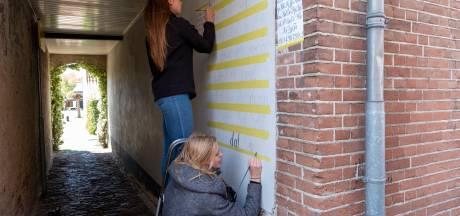 Cibapstudenten brengen Hattem tot leven met muurgedichten: 'Ode aan het geschreven woord'