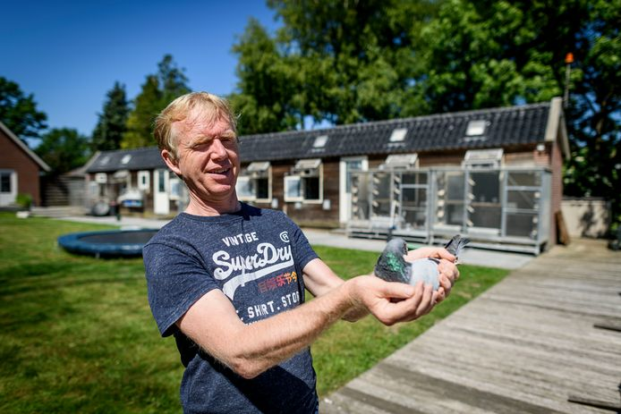 Jelle Jellema is een moderne duivenhouder. In zijn hand duif Lars, de tweede van Nederland.