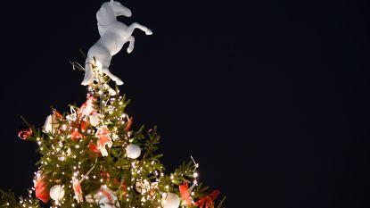 Dieven stelen kerstgeschenken in Kinrooi
