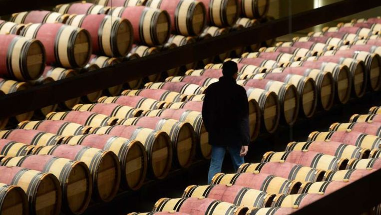 De vaten van een wijngaard in de regio Saint-Estèphe in de Franse Bordeaux-streek Beeld AFP