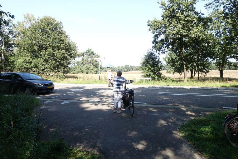 de gelijkvloerse kruising van het fietspad tussen het Leuvenumse Bos en Ermelo met de N302 Beeld