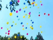 Meerderheid wil verbod op ballonnen in Vallei