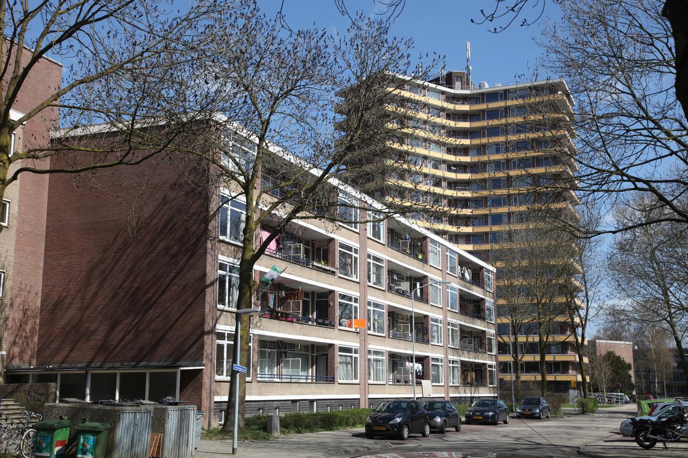 De Nude in Wageningen, wijk met veel studentenbewoners.