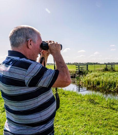 Ganzen en zwanen tellen in Vinkeveen: 'Hiermee kunnen we hard maken hoe groot de problemen zijn'