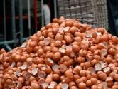 Nog 144 kippenbedrijven op slot na eierschandaal