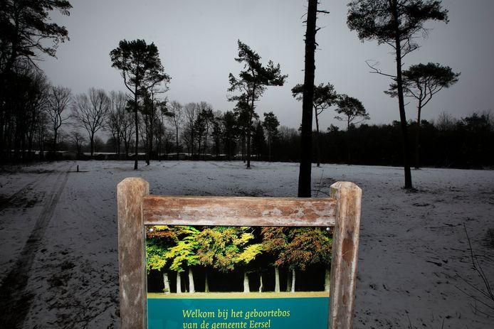 Eersel In de bossen ten zuiden van Eersel zijn de afgelopen tijd bomen gerooid en is bij de parkeerplaats van de trimbaan aan de Postelseweg een mooie open ruimte ontstaan. Daar moet een geboortebos ontstaan.
