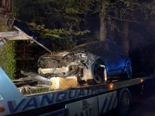 Automobilist knalt tegen boom langs Zeeweg, takken vallen tot op pechstrook E40