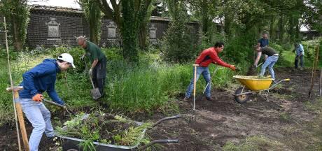 Vrijwilligers maken moestuin van de nonnen weer zichtbaar: 'Een soort archeologische klus'