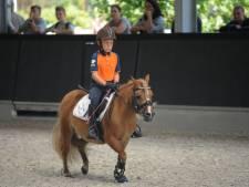 Ponyrijden en herten spotten: Vierhoutense campingmanege Samoza is weer open