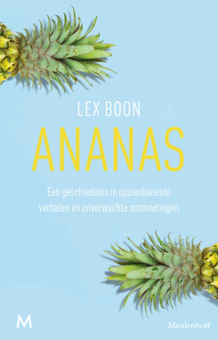 Het Ananasboek van Lex Boon  Beeld