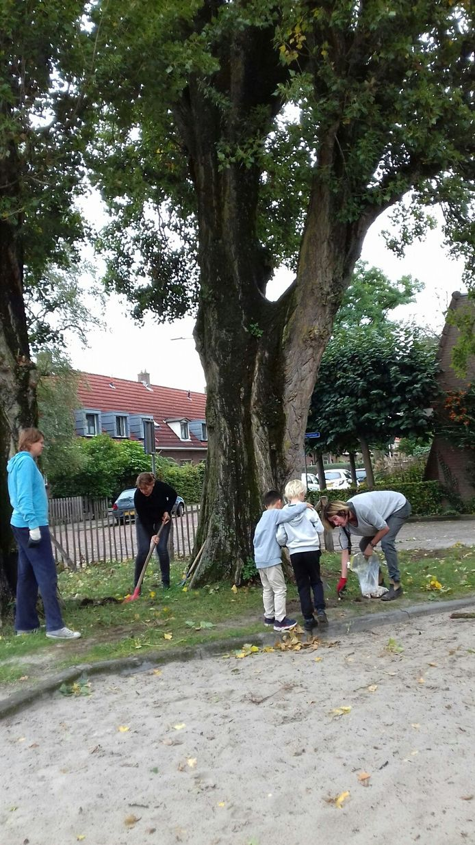 Met een kleine bijdrage van het Oranjefonds kunnen de deelnemers aan de Groene Burendag hun woonomgeving nog verder vergroenen.