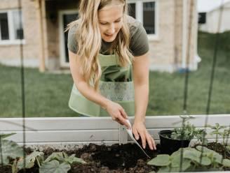 Lasagne gardening: de slimme tuinoplossing voor luilakken met groene vingers