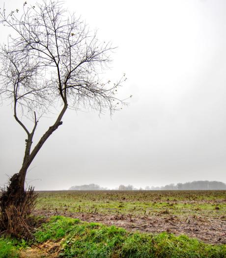 Donkere wolken boven boeren in Tubbergen