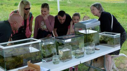 Meer dan duizend soorten fauna en flora waargenomen in Kalkense Meersen