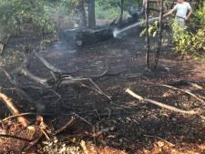 Brandje in bos bij Nijkerk