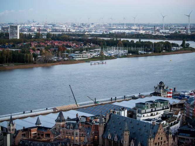 """Ook in de Schelde te veel PFOS, maar hoe vuil is het water nu echt? """"Meer vis dan vroeger, maar je eet die maar beter niet"""""""