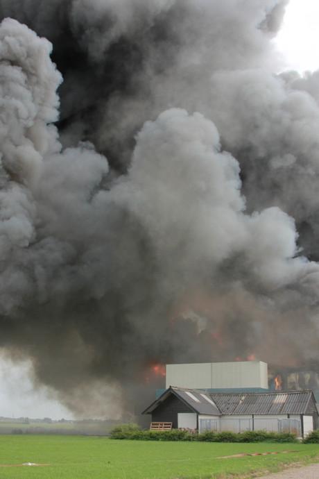20.000 varkens dood in Erichem door grootste stalbrand ooit