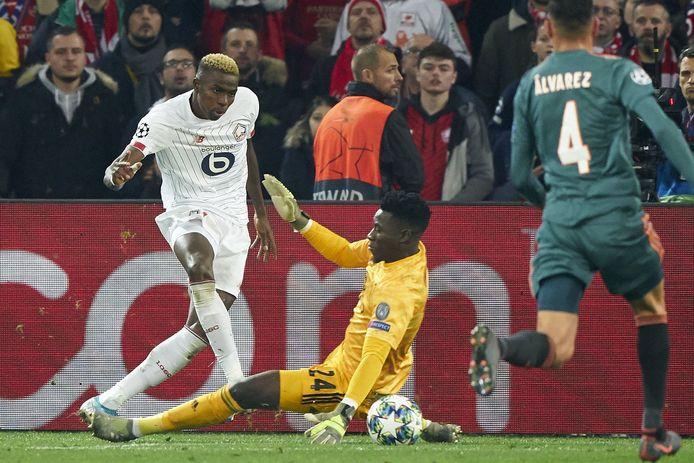 Une petite saison à Lille et direction l'Italie pour Victor Osimhen.