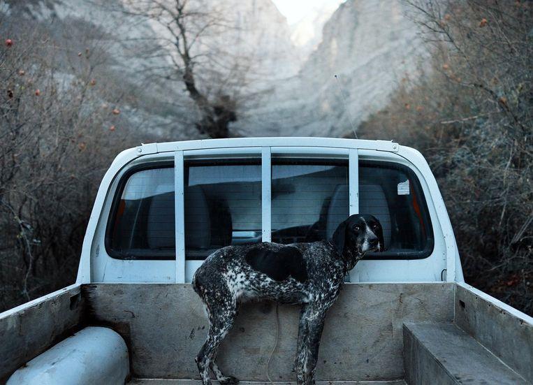 Beelden uit Untitled, een verslag van Michael Glawoggers reis van Oostenrijk, via de Balkan, naar Afrika. Beeld RV
