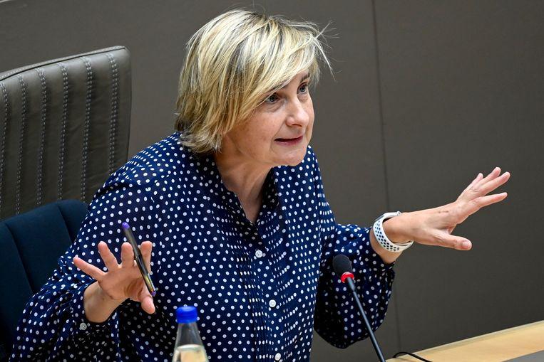 Minister van Economie Hilde Crevits (CD&V) Beeld BELGA
