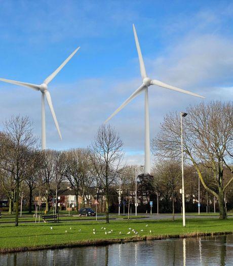 Pleidooi voor uitstel windpark achter Spijkenisse-Noord
