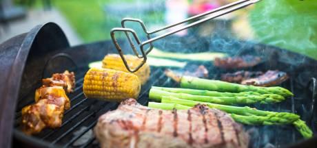 In deze Leidse parken mag je barbecueën