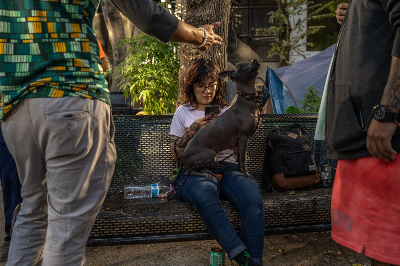 María Bonita met haar hond op de marihuanavrijplaats naast het senaatsgebouw in Mexico-Stad. Beeld Alejandro Cegarra