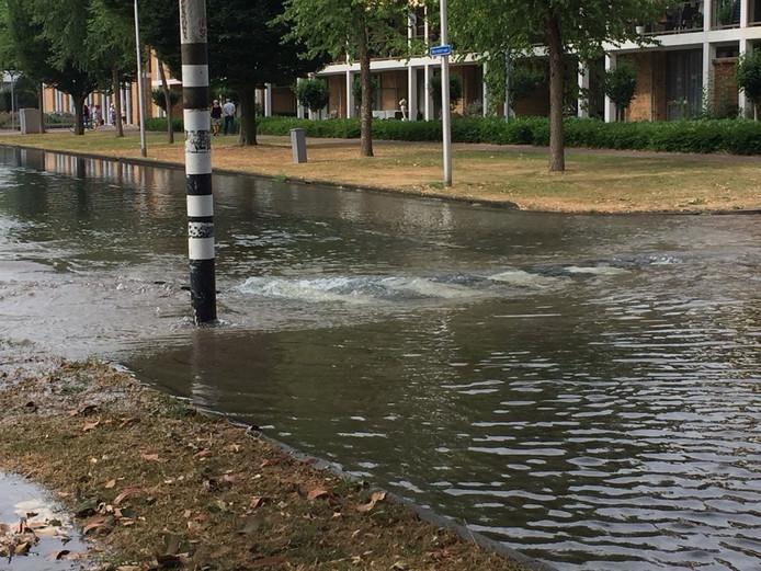 Een gesprongen leiding zorgt voor een waterballet in de Zwijndrechtse Merelstraat.