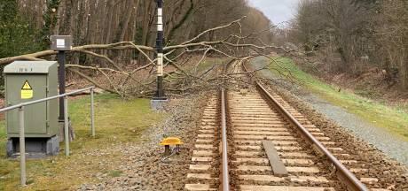 Treinverkeer Lochem - Zutphen hervat na boom op het spoor