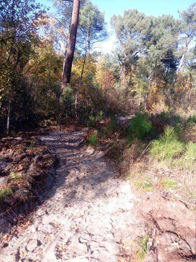 De aanleg van de speciale route voor mountainbikes  is gestart.