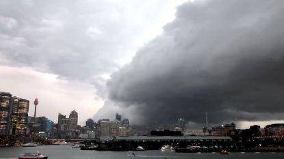 Noodweer in Sydney zet 40.000 gebouwen zonder stroom