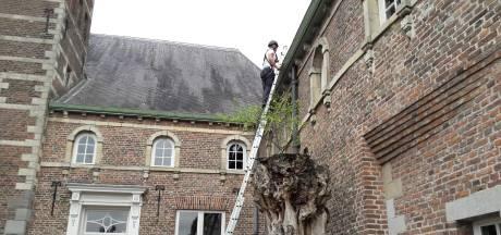 Sint-Oedenrode praat over toekomst raadhuis Meierijstad