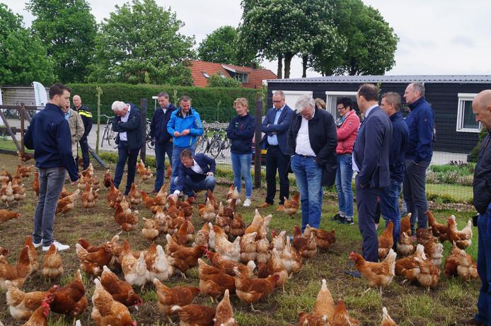 Hardenbergs college op werkbezoek bij kippenschuur.