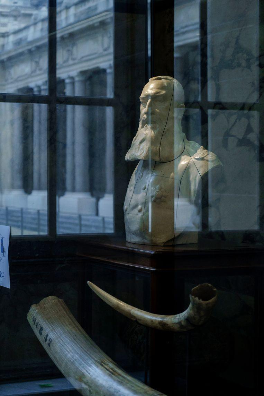 Een ivoren buste van koning Leopold II, de omstreden stichter van het museum, stond vroeger centraal in de grote rotonde maar is nu verbannen naar een hoekje in het museum. Elders in de tentoonstelling geven Afrikaanse intellectuelen in videoboodschappen kritiek op zijn koloniale bezetting van Congo. Beeld Eric de Mildt