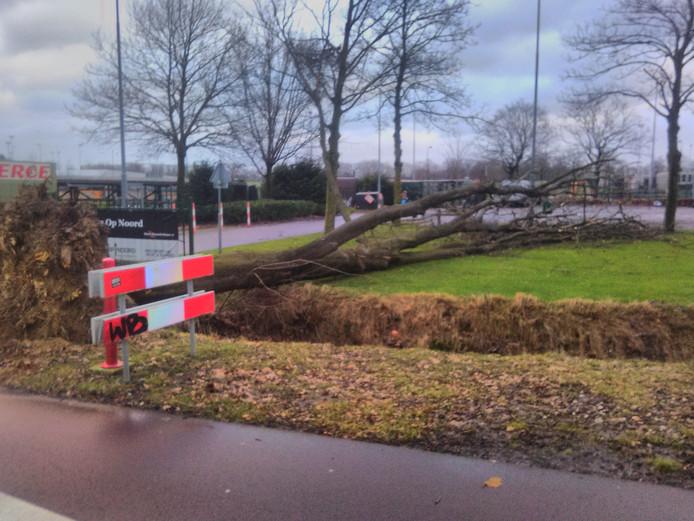 Ook op de Oude Bosschebaan 11 in Eindhoven gaat het mis.
