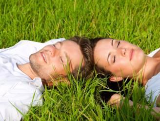 Waar je de ware liefde vindt: het platteland
