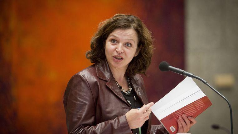 Minister Schippers van Volksgezondheid in de Tweede Kamer. Beeld ANP