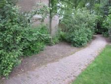 Snippergroen is een melkkoe voor de gemeente Hellendoorn